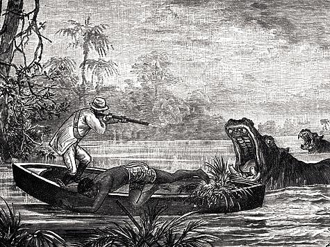 Охота надиких зверей или приключения молодого акробата